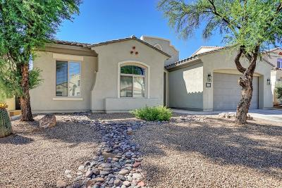 Sahuarita Single Family Home For Sale: 326 E Via Puente De La Lluvia