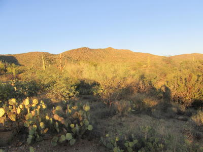 Residential Lots & Land Active Contingent: S Palo Verde Ranch Road