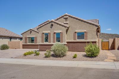 Marana Single Family Home For Sale: 9820 N Havenwood Way