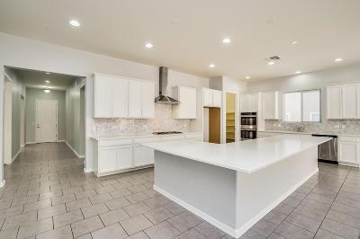 Tucson Single Family Home For Sale: 38905 S Running Roses Lane