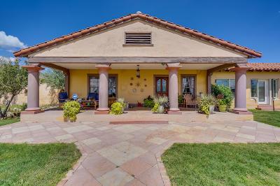 Benson Single Family Home For Sale: 12050 S Desert Sanctuary Road