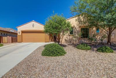 Marana Single Family Home For Sale: 12477 N Wind Runner Parkway