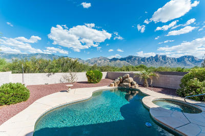 Oro Valley Single Family Home Active Contingent: 13236 N Lost Artifact Lane