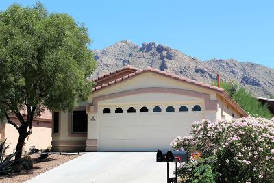 Oro Valley Single Family Home For Sale: 8320 N Austin Nikolas Court