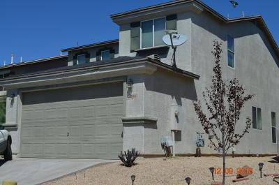 Tucson Single Family Home For Sale: 1504 W Beantree Lane