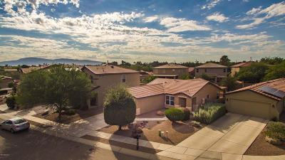 Tucson Single Family Home For Sale: 4056 E Wading Duck Court