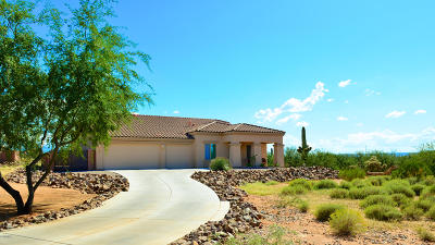 Sahuarita Single Family Home For Sale: 17952 S Golden Valley Drive