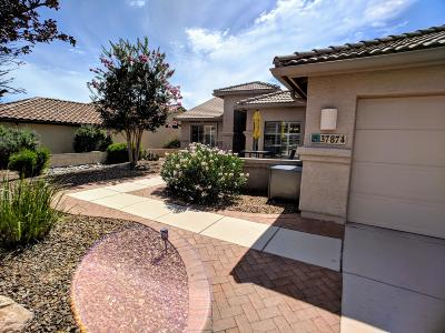 Tucson Single Family Home For Sale: 37874 S Boulder Wind Drive