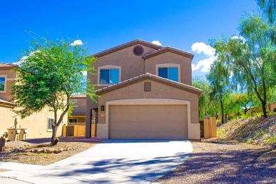 Sahuarita Single Family Home For Sale: 380 E Placita Nodo