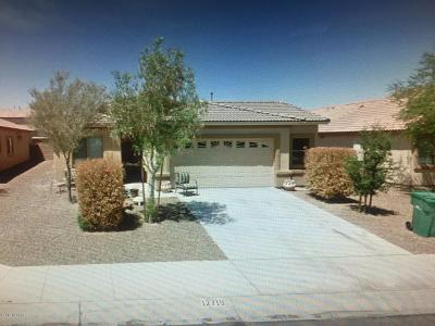 Marana Single Family Home For Sale: 12719 N Belarus Drive