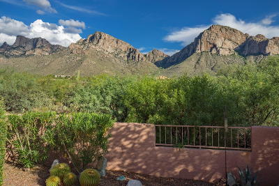 Oro Valley Single Family Home For Sale: 10275 N Alder Spring Drive