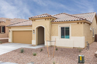 Marana Single Family Home For Sale: 7163 W River Trail