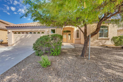 Single Family Home Active Contingent: 6992 W Fall Garden Way