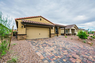 Marana Single Family Home For Sale: 14140 N Silverleaf Lane N