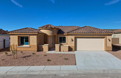 Marana Single Family Home For Sale: 7218 W River Trail