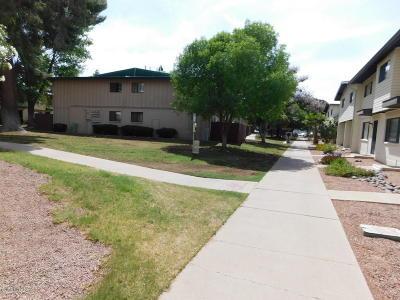 Tucson Condo For Sale: 1324 S Avenida Polar #D201