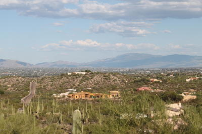 Tucson Residential Lots & Land For Sale: 6379 W Park Ridge Road