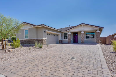 Marana Single Family Home For Sale: 7195 W Cactus Flower Pass W