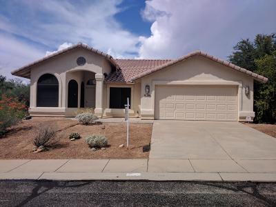 Tucson Single Family Home For Sale: 1431 E Triton Place