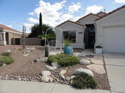 Single Family Home Active Contingent: 9558 E Creek Vista Place