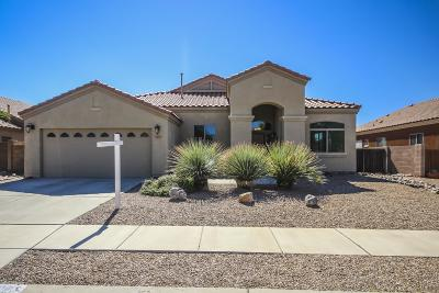 Single Family Home For Sale: 10498 E Black Willow Drive