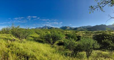 Tubac Residential Lots & Land For Sale: 80 Bond Canyon Road #2/62#
