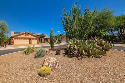 Oro Valley Single Family Home For Sale: 1556 W Periwinkle Place