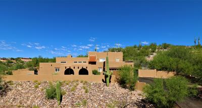 Tucson Single Family Home For Sale: 6787 E Snyder Road