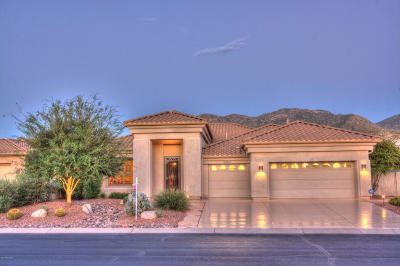 Saddlebrooke Single Family Home For Sale: 37661 S Desert Sun Drive