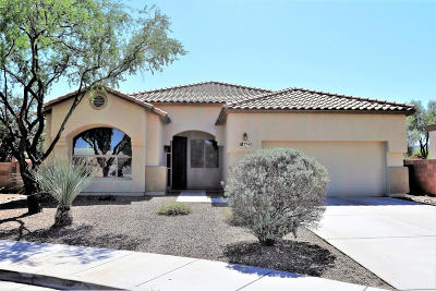 Tucson Single Family Home For Sale: 7743 W Vista Point Court