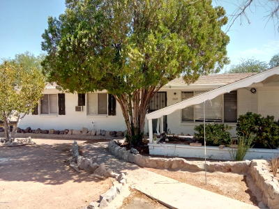 Tucson Single Family Home For Sale: 2747 S Enchanted Hills Drive
