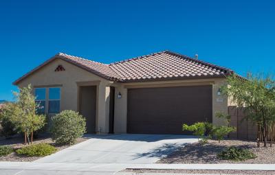 Single Family Home For Sale: 3913 S Corte Rana Rica