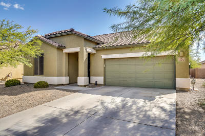 Marana Single Family Home For Sale: 12676 N Brabant Drive