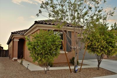 Tucson Single Family Home For Sale: 6844 S Benedetti Court