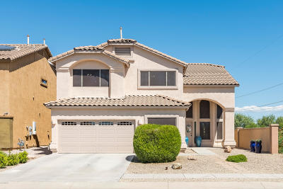 Sahuarita Single Family Home Active Contingent: 14 W Calle Patio Lindo