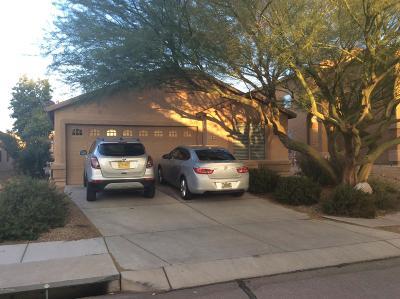 Tucson Single Family Home For Sale: 7809 S Baja Stone Avenue
