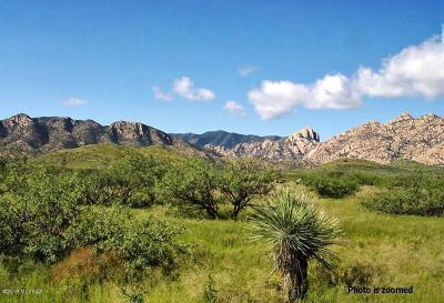 Cochise Residential Lots & Land For Sale: 24 +/- Acre On Ironwood Road #1