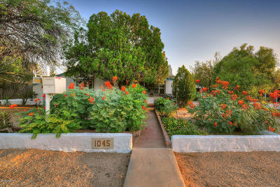Tucson Single Family Home For Sale: 1045 E Hampton Street