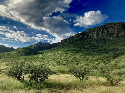 Tubac Residential Lots & Land For Sale: 99 Tejano Springs Road #2/80