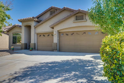 Sahuarita Single Family Home For Sale: 971 W Calle Iribu