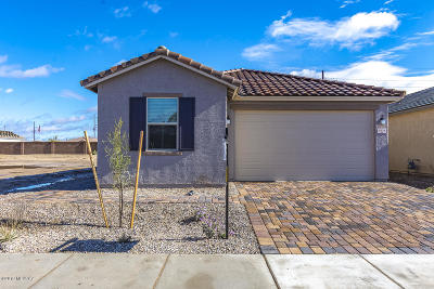 Tucson Single Family Home For Sale: 8618 N Genoa Court
