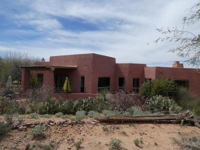 Tucson Single Family Home For Sale: 13817 E Langtry Lane