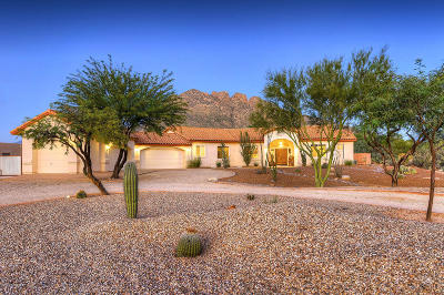 Tucson Single Family Home For Sale: 8700 N Northern Avenue