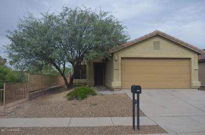 Tucson Single Family Home For Sale: 2492 S Adventure Trail