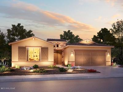 Single Family Home For Sale: 11729 N Village Vista Place