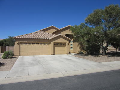 Marana Single Family Home For Sale: 11068 W Caracara Drive