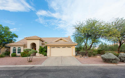 Tucson Single Family Home For Sale: 1422 W Sunridge Drive
