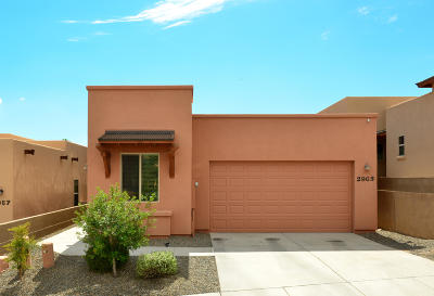 Tucson Single Family Home For Sale: 2963 W Stepping Stone Court