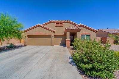 Tucson Single Family Home For Sale: 8068 W Fish Eagle Drive