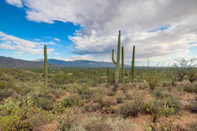 Tucson Residential Lots & Land Active Contingent: 10632 E Gibbon Canyon Place #26